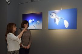 "AKAUM ve EFSAD'tan ""Sade"" fotoğraf sergisi"