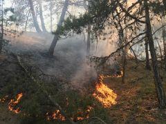 Eskişehir'de iki farklı noktada orman yangını