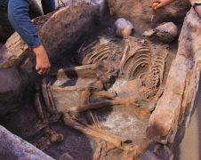 (Özel Haber) Kazı çalışmasında 5 bin yıllık insan iskeletleri çıktı