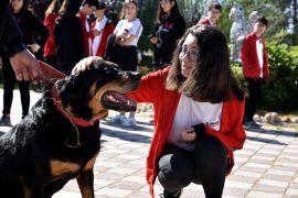Öldü sandığı köpeğine okul gezisinde kavuştu