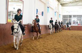 ESOGÜ Mahmudiye Atçılık Meslek Yüksekokulundan bir proje daha