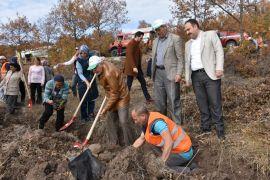 İnönü'de geleceğe nefes olmak için 2 bin fidan toprakla buluştu