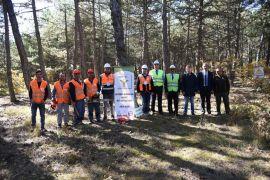 Ormancılık iş koluna mesleki yeterlilik belgesi şartı getirildi
