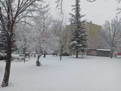 Eskişehir'de dün yazdı bugün kış