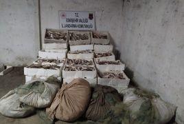 Kaçak balık avcılarına 31 bin 320 TL para cezası