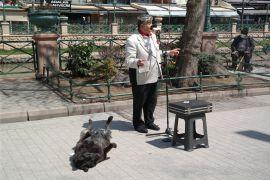 Sokak müzisyenin yanından bir an olsun ayrılmayan köpek
