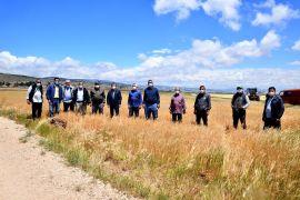 Başkan Ataç kuraklık nedeniyle ürünleri tarlada kalan üreticileri yalnız bırakmadı