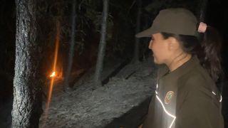 Gece karanlığından orman yangınına kadın eli