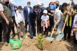 """Eskişehir'de """"Sıfır Atık Kazanımları Ormanı"""" oluşturuldu"""